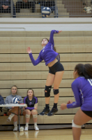 Gallery: Volleyball Capitol City Invite